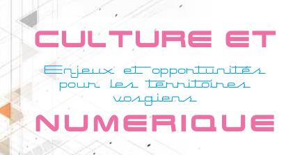 numerique-CG88-2013