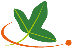 logo_tela_feuille