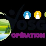 cropped-logo_VOL300x152.png